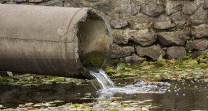 Экологи обследовали акваторию реки Биюк-Карасу в районе Белогорска. Кто «гадит» в реку?