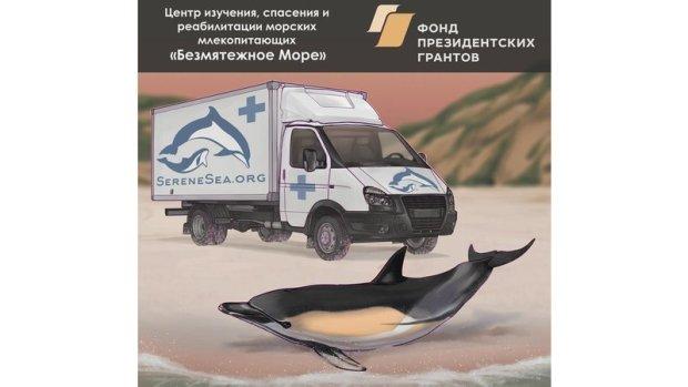Отличные новости для дельфинов Черного моря