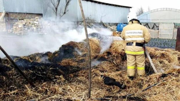 «Огненная» хроника 5 марта: за минувшие сутки в Крыму зафиксировано 18 пожаров