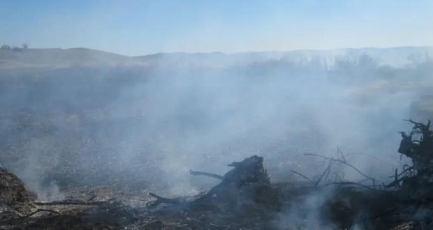 Крупное возгорание сухой растительности в Советском районе Крыма