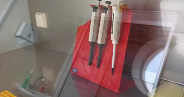 В Севастополе за сутки «плюс два» случая проявления коронавируса