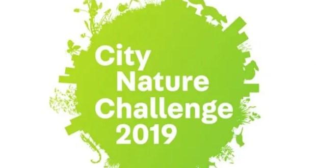 Сотрудники СевГУ - в топ-10 международного чемпионата City Nature Challenge