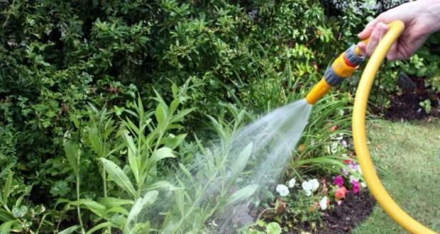 В Севастополе вводится график подачи воды садовым товариществам