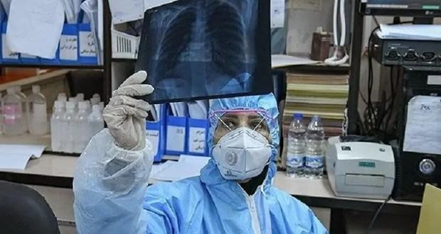 В Севастополе цифры по COVID-19 внушают оптимизм: трое заболело, 8 - выздоровело