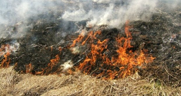 В Бахчисарайском районе выгорели 500 кв.м. сухой травы