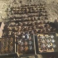 В Ленинском районе Крыма обезвредили 415(!) боеприпасов времён ВОВ