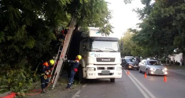 В Симферополе дерево упало на грузовик – перекрытыми оказались две полосы движения