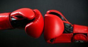 Боксерские перчатки – элемент экипировки, символ вида спорта, помощники бойца