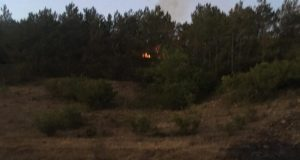Воскресный пожар в Бахчисарайском районе удалось локализовать поздно вечером