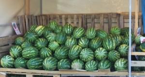 В Севастополе определили места, где можно торговать арбузами и дынями. Список «точек»