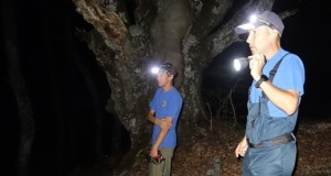 Сотрудники «КРЫМ-СПАС» оказали помощь туристам в районе Ангарского перевала
