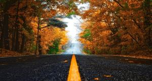 22 сентября — день осеннего равноденствия