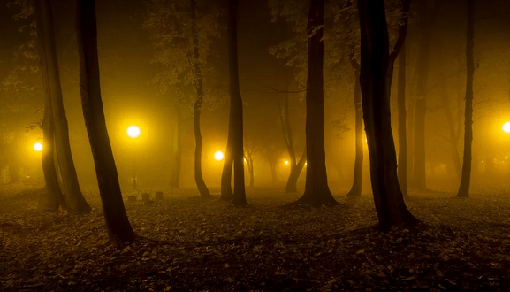 Сухо, солнечно, но ночью - туман. Погода в Крыму