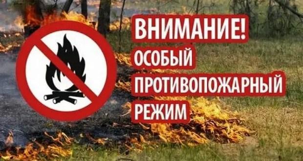До конца октября в Крыму продлены ограничения посещения лесов
