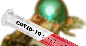За сутки в Севастополе «плюс» 61 заболевший коронавирусом
