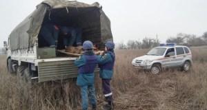 Пиротехники МЧС России уничтожили 11 взрывоопасных предметов, найденных в Ленинском районе Крыма