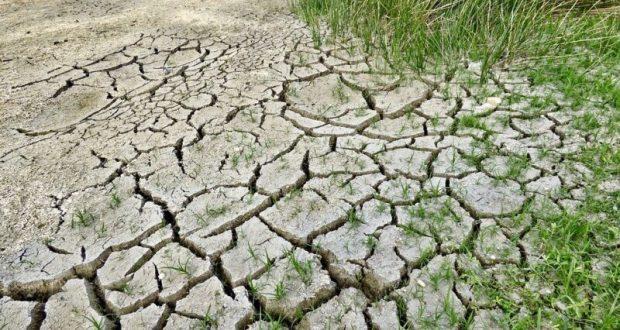 В ялтинских водохранилищах – 17% воды от общего объема. Принято решение – отключать воду по ночам