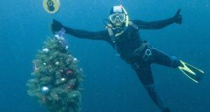 Крымские дайверы водили хоровод вокруг подводной ёлки