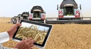 Минсельхоз Крыма внедрит пилотный проект информационной системы работы с аграриями республики