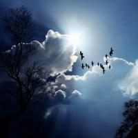 24 февраля — Власий. Говорят, начинаются три последних в текущую зиму холодных дня