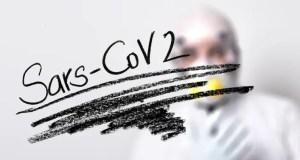 Эксперты КФУ: эффективными будут вакцины, которые учитывают возникновение новых подтипов SARS-CoV-2