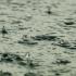 Погода в Крыму - прохладно и дождливо