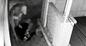 Жесть по-симферопольски: ограбил, избил пьяного пенсионера. Добычей стал старенький кнопочный мобильник