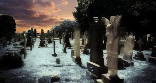 В Севастополе намерены привести в порядок четыре крупных воинских кладбищ
