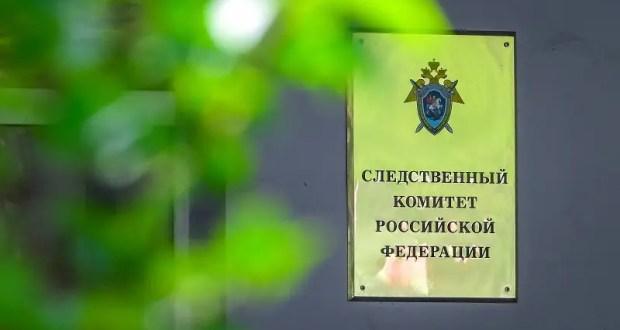 В Ялте чиновник «просмотрел» незаконную вырубку деревьев на 6 миллионов рублей