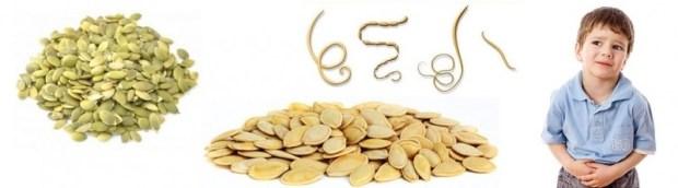 Тыквенные семечки от глистов - рецепты и применение