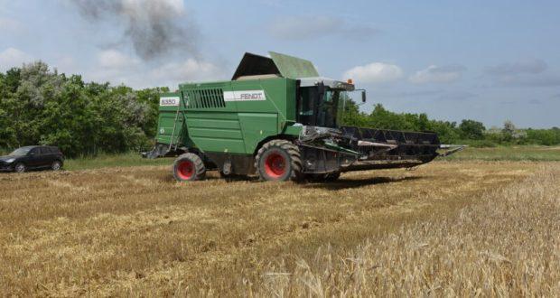 В Республике Крым стартовала уборочная кампания озимых зерновых культур – 2021