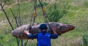 За две недели крымские пиротехники уничтожили более 300 авиабомб различного калибра