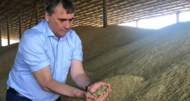 С начала уборочной кампании аграрии Крыма убрали 72 тысячи гектаров площади