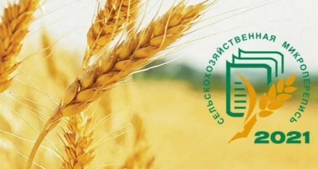 В Крыму пройдет сельскохозяйственная микроперепись