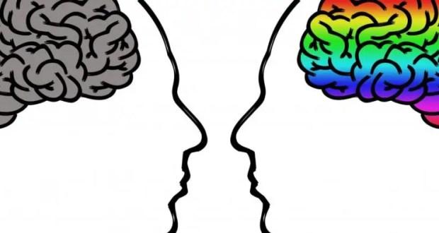 В лабиринтах разума. 22 июля - Всемирный день мозга
