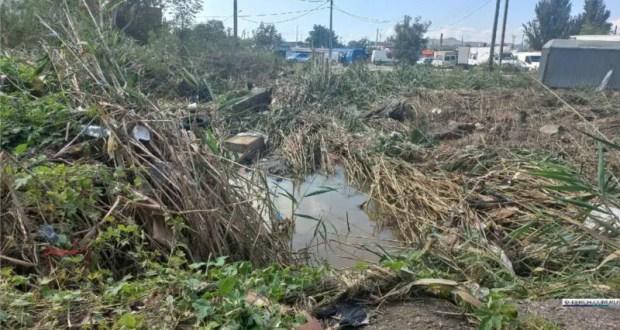 В Керчи начали расчищать русло реки Восточный Булганак