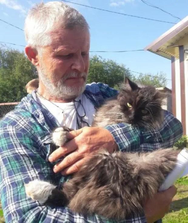 История из Керчи про кота, человеческую верность и о том, что никогда нельзя отчаиваться