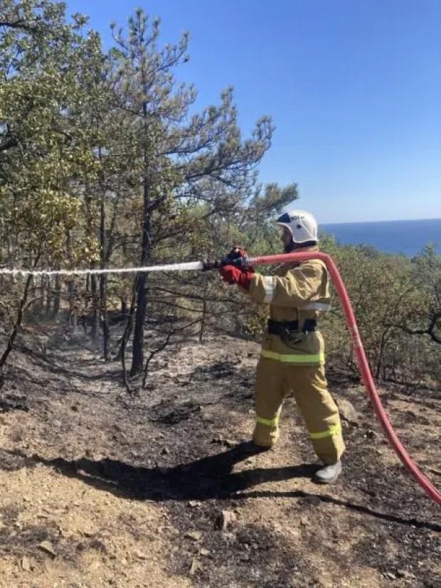 Лесной пожар в Крыму: за три часа выгорело почти три гектара растительности