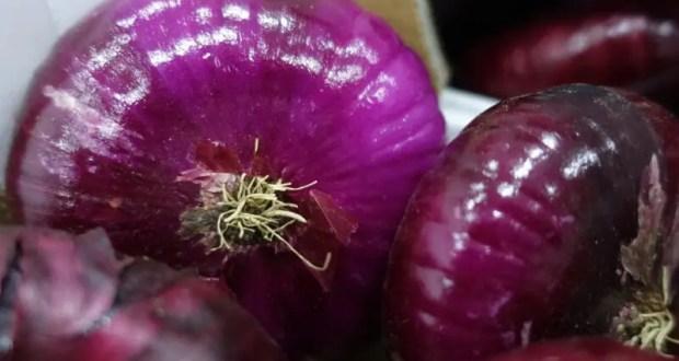 В Крыму собрали 110 тонн ялтинского лука