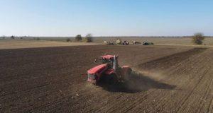 В Крыму засеяли более 340 тысяч гектаров озимых зерновых