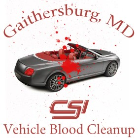 Gaithersburd MD Vehicle Blood Cleanup