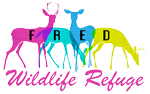 Fred Wildlife Refuge
