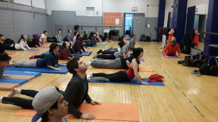 Yoga classes at the College