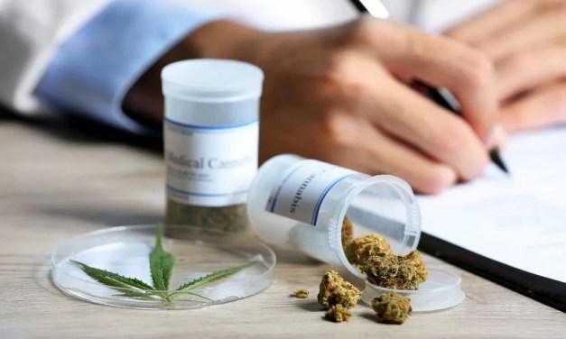 Líder em indústria medicinal de Cannabis abre subsidiária em Austrália para projetos com blockchain