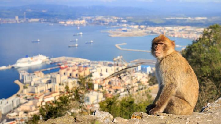 Gibraltar-Regulacion-Criptomonedas