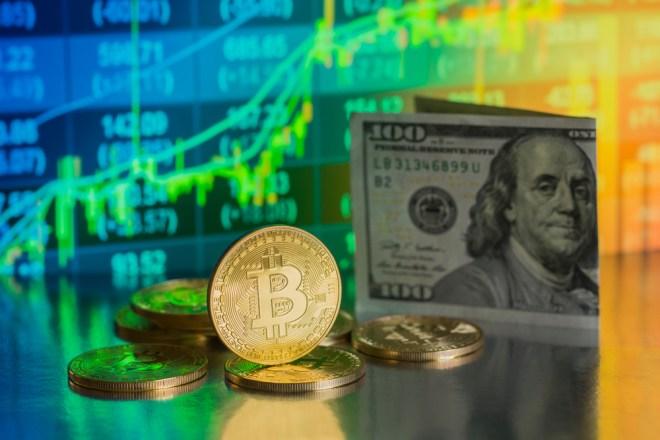 Bitcoin Dolar Riqueza