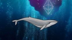 Una gran ballena está intentando manipular el precio de Ethereum