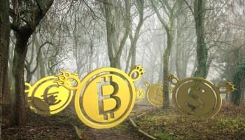 bitcoin in euro previsioni