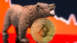 El precio del Bitcoin se acerca al soporte clave de los US$ 8.000
