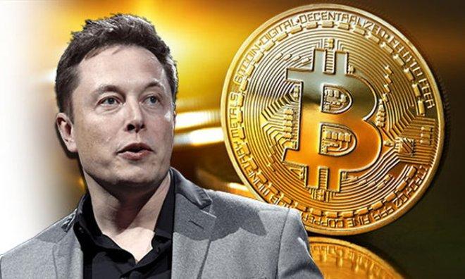 Empresario y multimillonario Elon Musk revela cuántos Bitcoin tiene.